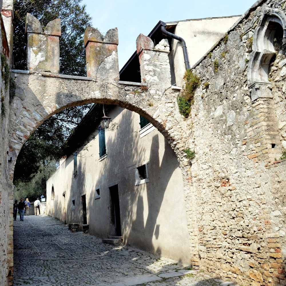 Tours - Excursion on Island Lake Garda (photo 7)