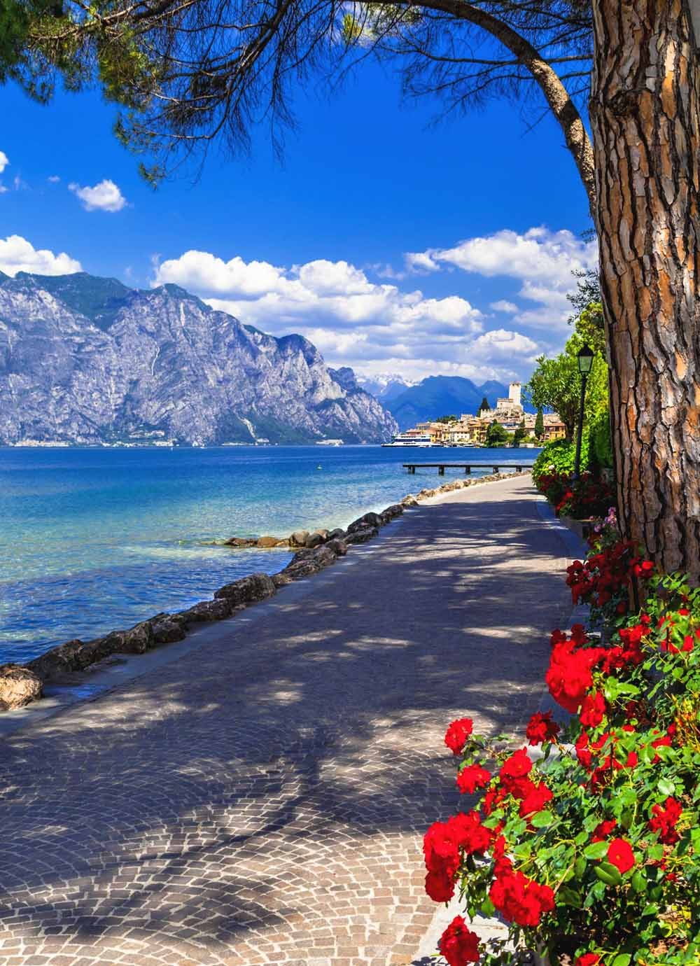 Tours - Mini cruise on Lake Garda with a tasting on board of a yacht (photo 7)