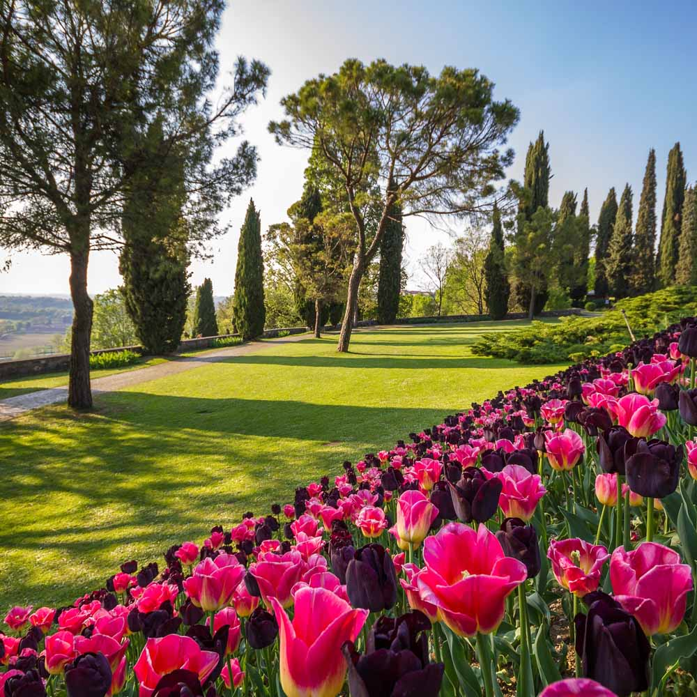Tours - Park Sigurtà (photo 4)