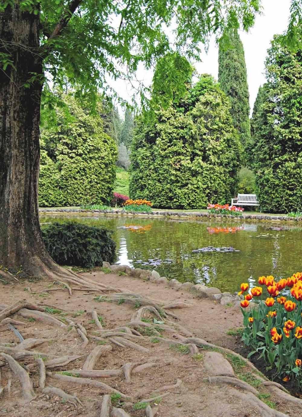 Tours - Park Sigurtà (photo 7)