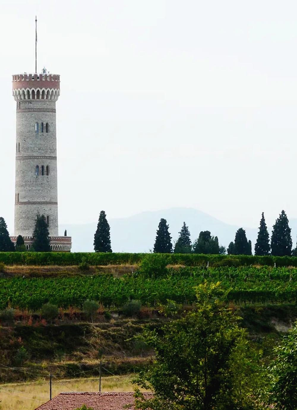 Tours - Lake Garda - an enogastronomic paradise (photo 1)