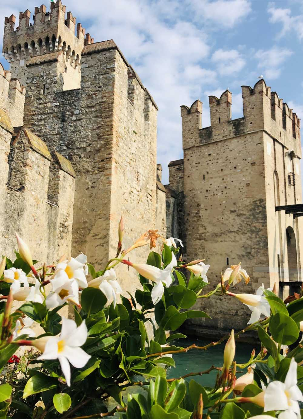 Tours - Sirmione and Valpolicella wines (photo 2)
