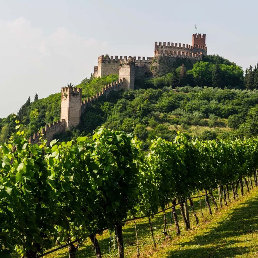 Tours - Verona, Lake Garda and local wineries (photo 5)