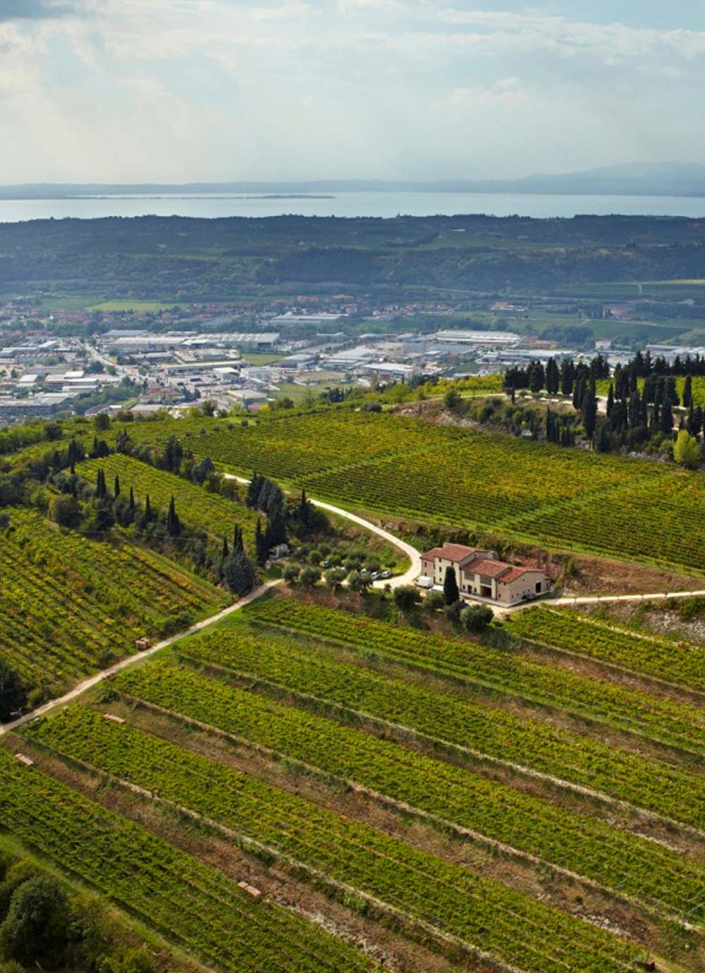 Tours - Verona, Lake Garda and local wineries (photo 7)