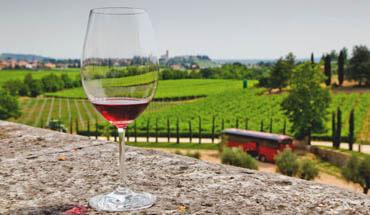 Verona, Lake Garda and local wineries