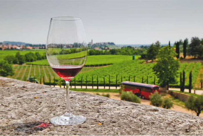 Tours - Verona, Lake Garda and local wineries (preview)