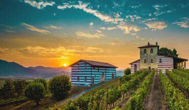 Tasting tour in the Franciacorta Valley